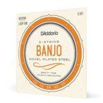 Banjo Cuerdas
