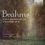 Brahms Viola