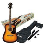 Guitarras Acusticas Ibanez
