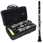 Instrumentos Clarinete