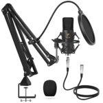 Microfono de Condensador Xlr