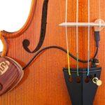 Pastilla Violin