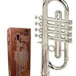 Trompeta Niño Instrumento