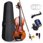 Violin 4/4 Profesional