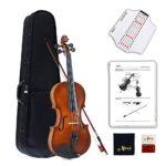 Violin Adulto